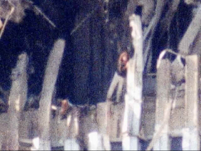 Pictures Of 9 11 Jumpers Bodies